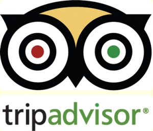 tripadvisor-resized-600